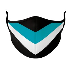 Black, Teal & White Face Mask