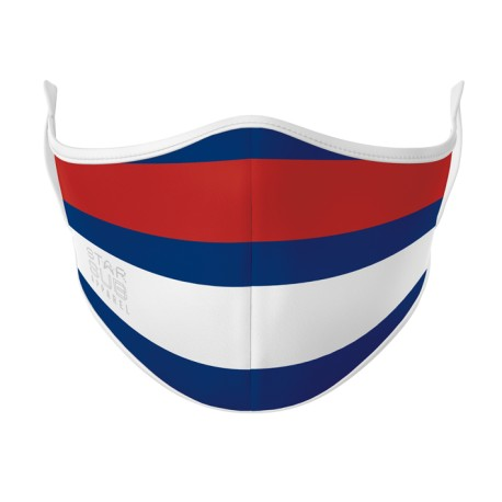 Red, White & Blue Face Mask